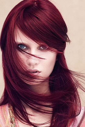 Слива волос цвет фото