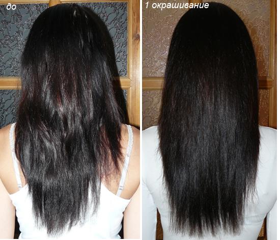 Волосы до и после окрашивания