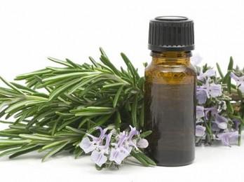 Польза эфирного масла розмарина для волос
