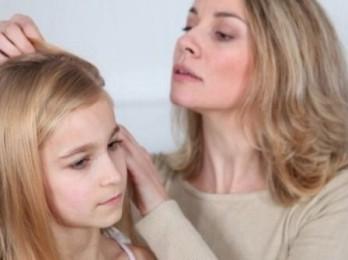 Если вы обнаружили вшей у ребенка — что делать?