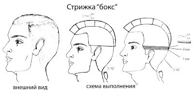 Схема стрижки