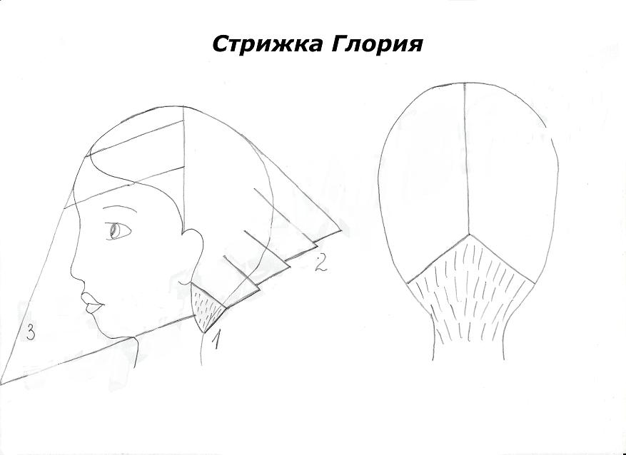 Схема глории