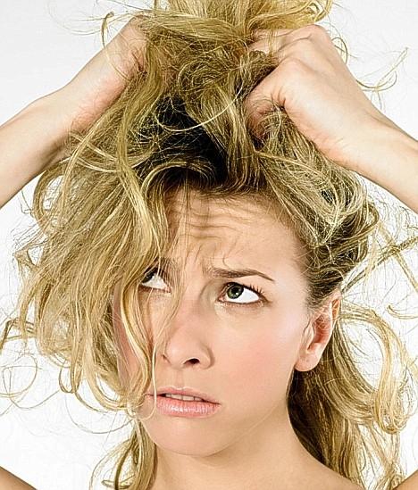 Шампунь для сухих и поврежденных волос: как выбрать лучший?