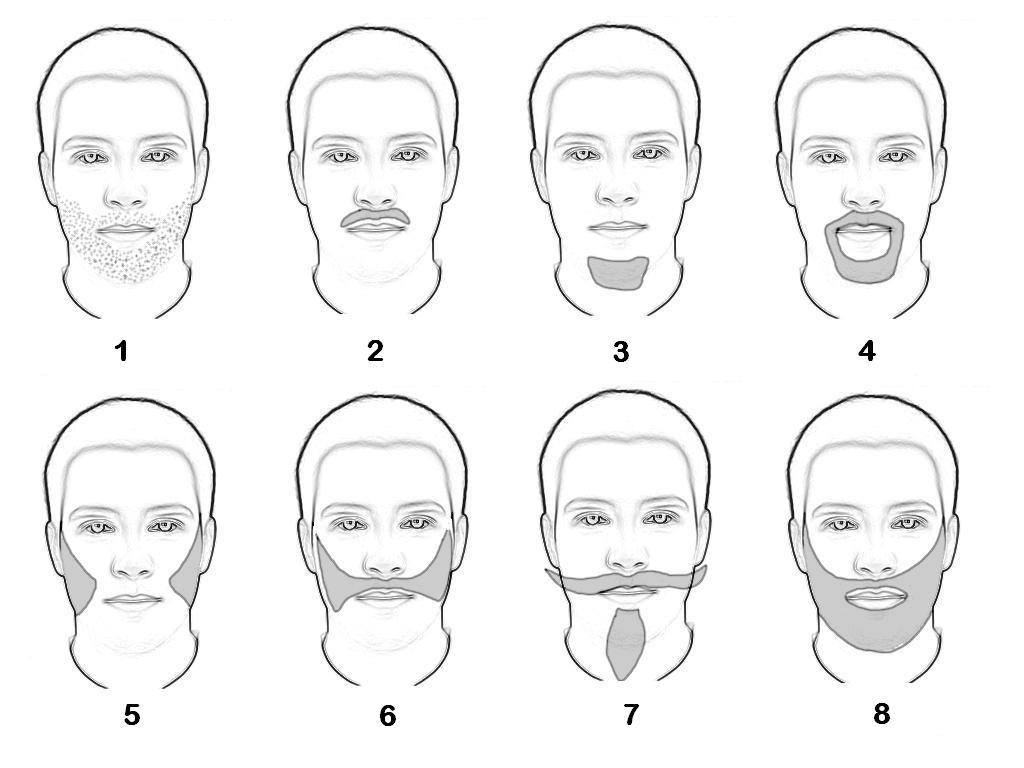 Формы бороды