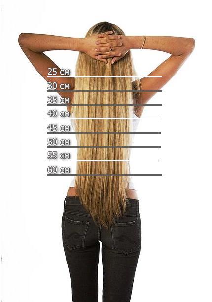 Средняя скорость роста волос на голове