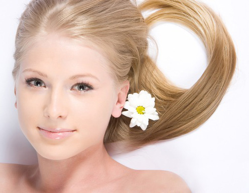 Осветление волос ромашкой в домашних условиях