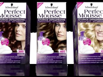 Причины популярности краски-мусса для волос Schwarzkopf Perfect Mousse