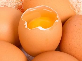 Чем полезны яйца для волос?